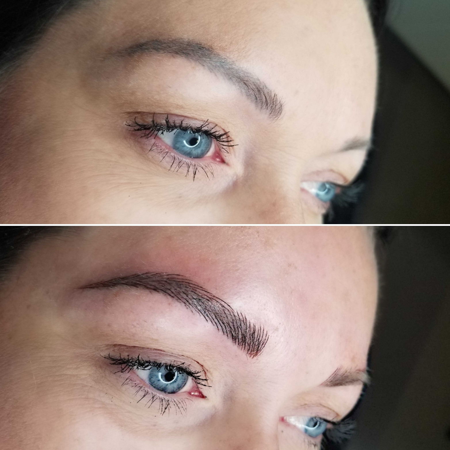 6 MONTH TOUCH-UP MICROBLADING ONLY