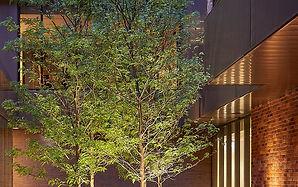 CH courtyard.jpg
