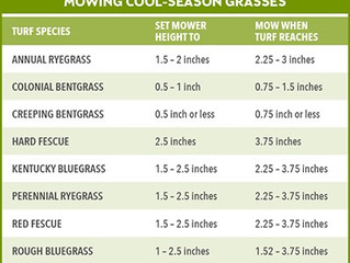 Spring's arriving, Summer is Coming!    Ever wonder when to mow your grass, water it, or feed it