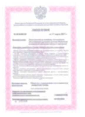 Лицензия 1стр.jpg