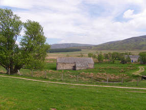 Scalan the Farm