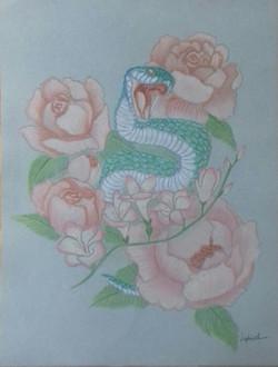 Happyness serpent