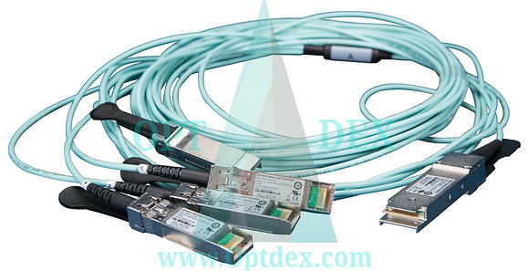 Extreme Networks 10065 10/100/1000BASE-T SFP