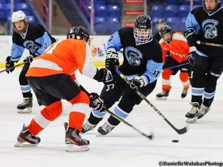 LMHL Playoffs - Day 2