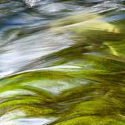 """Feel the Flow"""