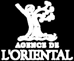 AGENCE DE L'ORIENTAL-Logo B.png