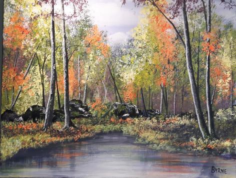 LAKE IDA ANNE PARK