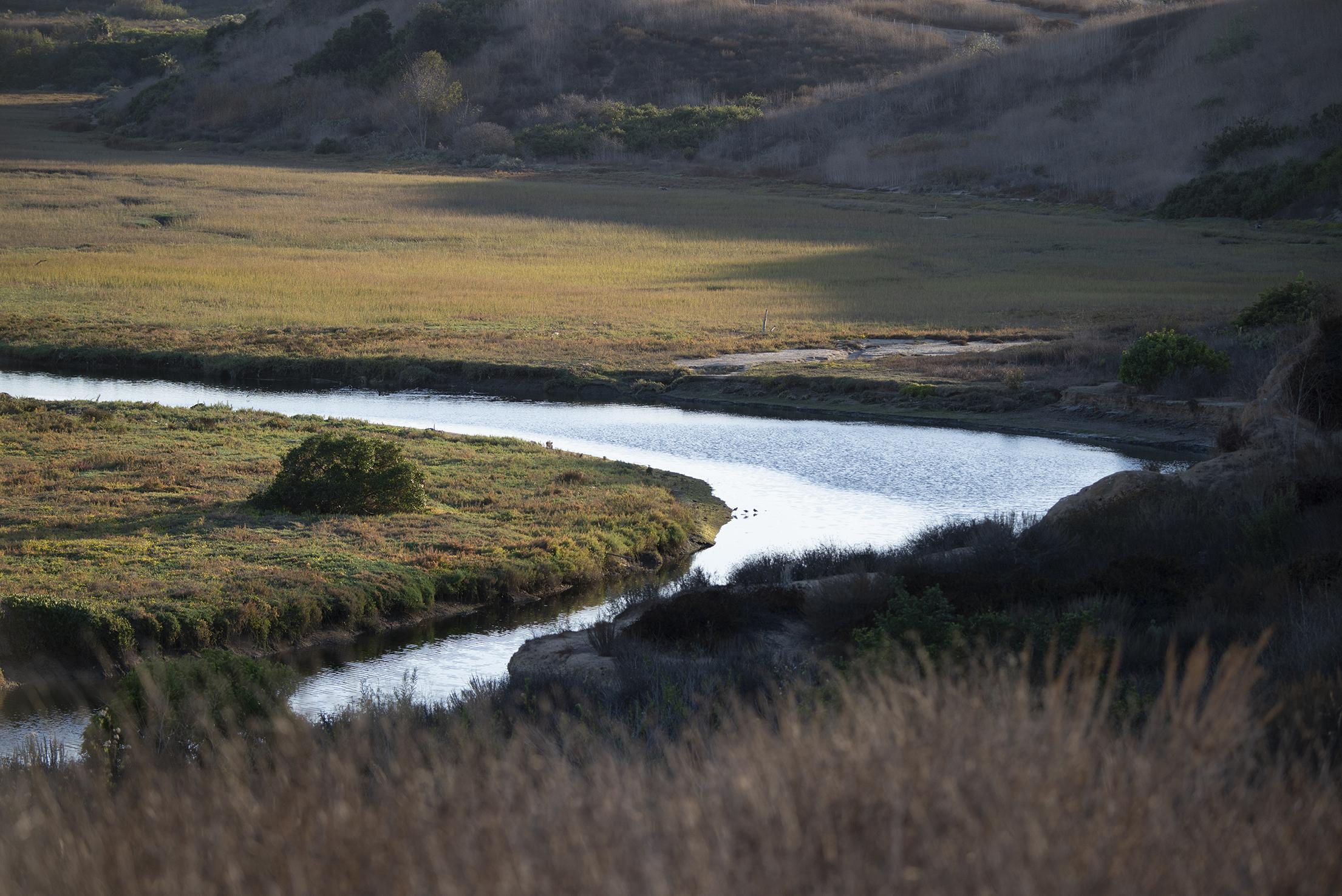 Upper Newport Bay Nature Preserve