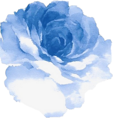 489-4897084_peony-outline-png.png