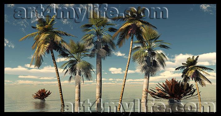 LANDSCAPE 017 EFRAIN RICARDO URIBE MOYA art4mylife (1)