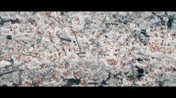 スクリーンショット 2020-03-31 11.02.21.png
