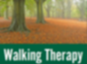 thewalkingtherapist_flyer_page1_190601_edited_edited_edited.png