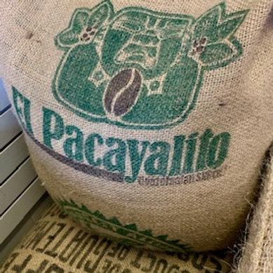 Guatemala Antigua-El Pacayalito-1 lb