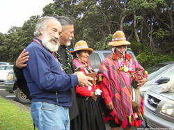 maestri hawaii