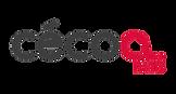 Logo_couleur-08.png