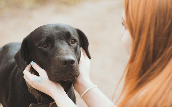 Lady petting black lab