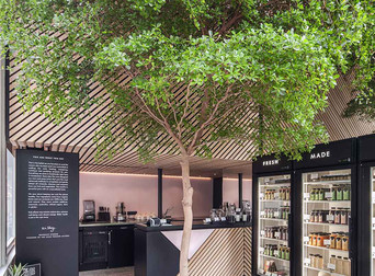 Interior Design Blog: The Cold Press Juicery by Standard Studio