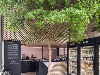 Interior Design Blog: The Cold Press Juicery by Standard Studio