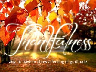Celebrating Judaism and Gratitude This Thanksgiving