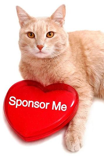 sponsor me.jpg