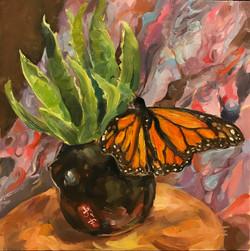 ButterflyStillLife