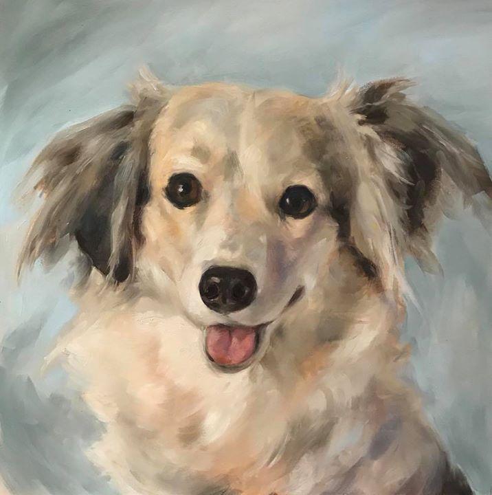 Super Cute Dog