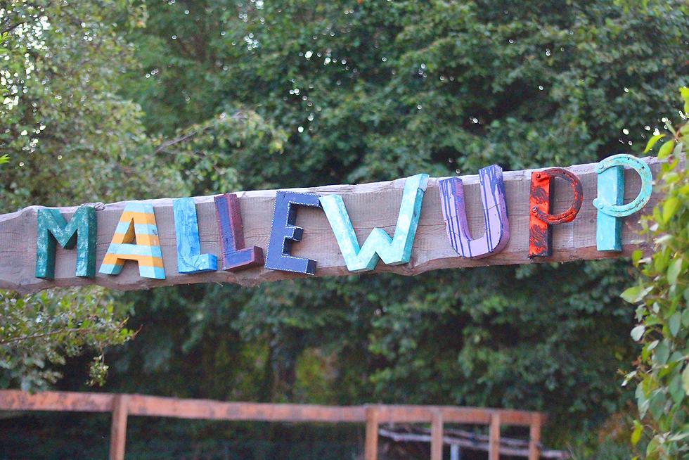 mallewupp : balken 2.png