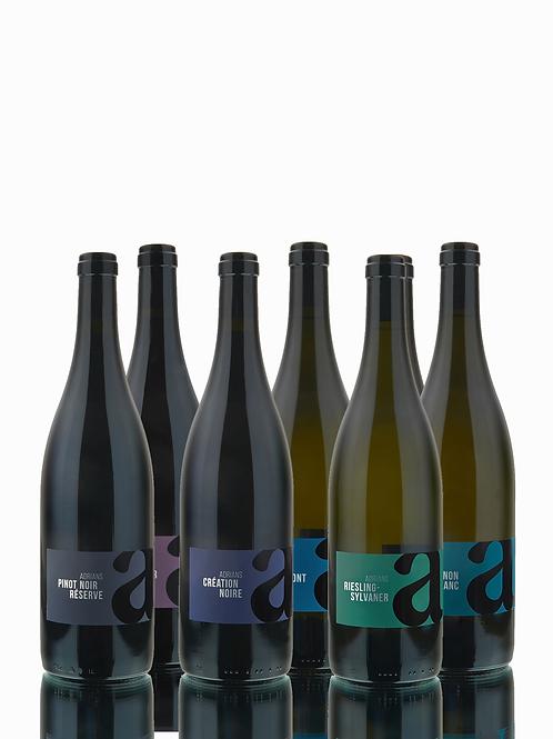 Degustationspaket Weiss- und Rotweine