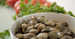 Local products - clams