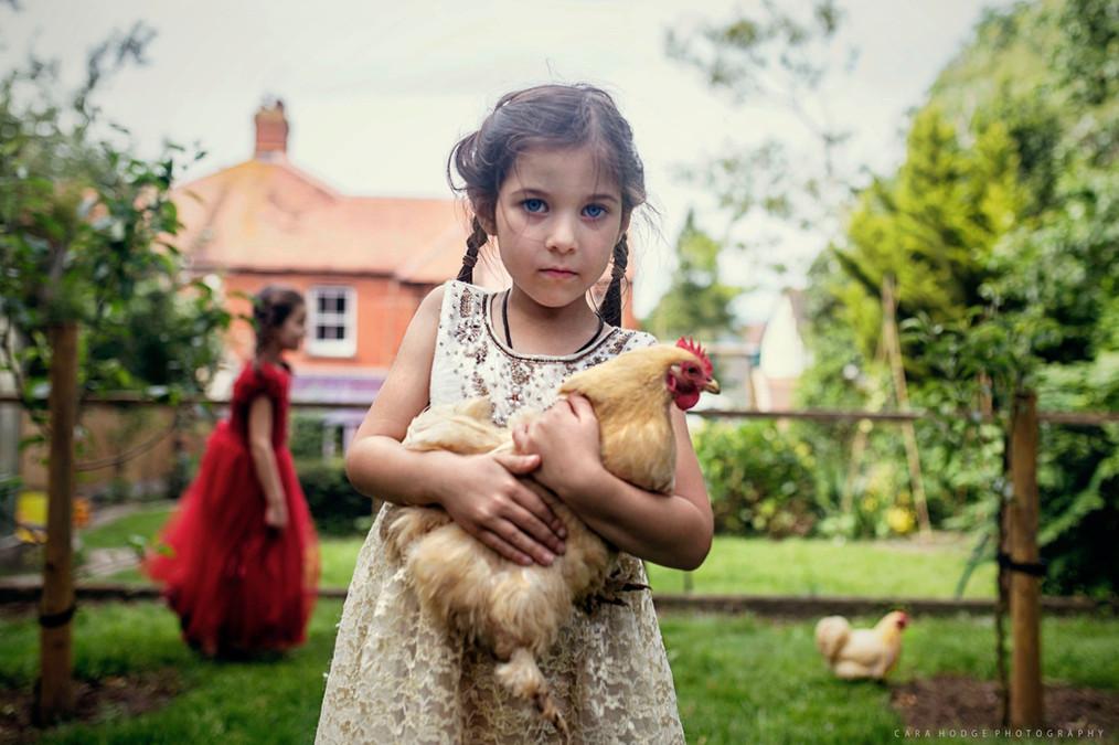 Chicken Holder