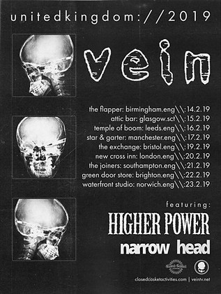 VEIN SELF-INITIATED TOUR POSTER CONCEPT (2019)