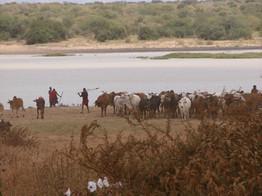 Field methods training in East Africa, NSF IGERT Highlights, 2009