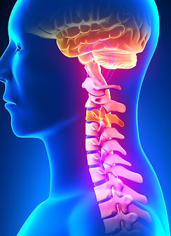 Spine Subluxation.jpg