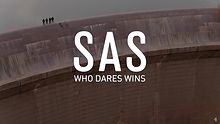 SAS.png