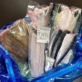 【12月食材定期便】__今月は世界三大漁場の北三陸より_旬の海産物をお届け