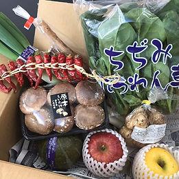 【11月配送 食材定期便】__今月配送の食材定期便は一関市室根町から_旬の
