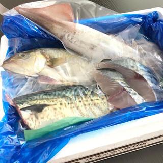 【9月 魚介コース】__毎月月末にお送りしている食材定期便魚介コースでは漁港