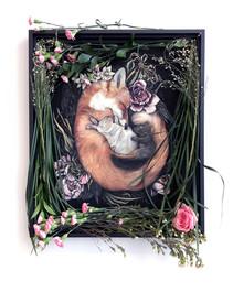 DEAD ASLEEP - blooming