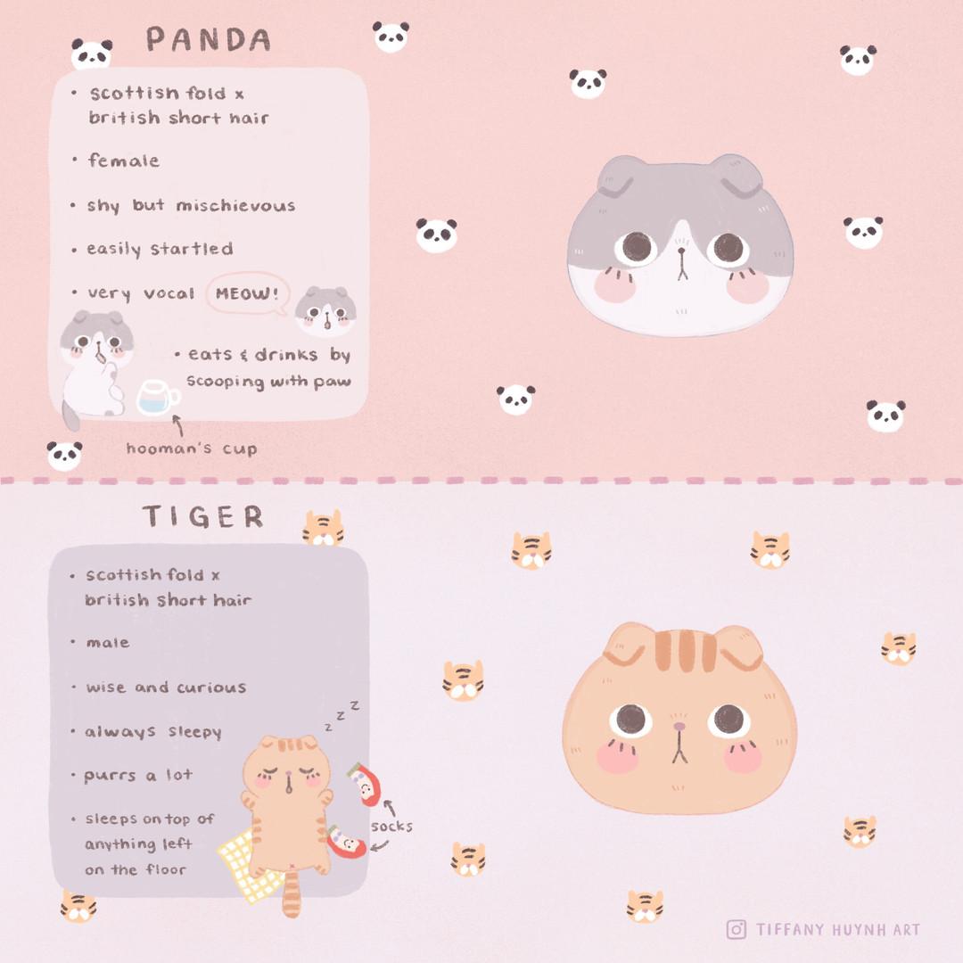 panda_and_tiger_Facts.jpg