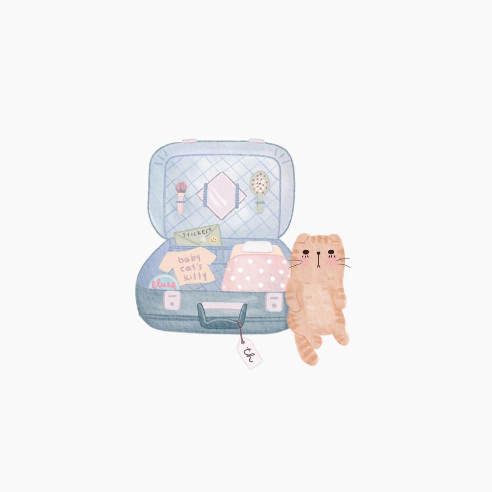 Baby Cat's Kitty