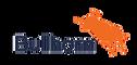 Bullhorn_Logo.png