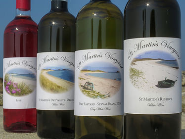 Four wine bottles lined up together with their labels facing the camera