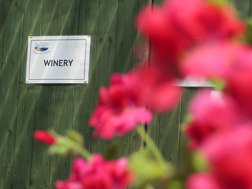 A green door with a sign saying 'Winery' - magenta red flowers are present in the foreground
