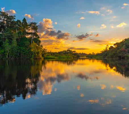 5 Motivos para visitar a Amazônia