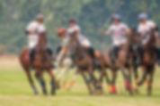 polo match.jpg