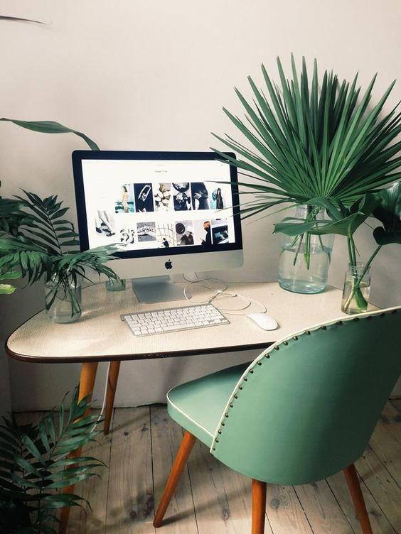 Decoração com plantas no HomeOffice