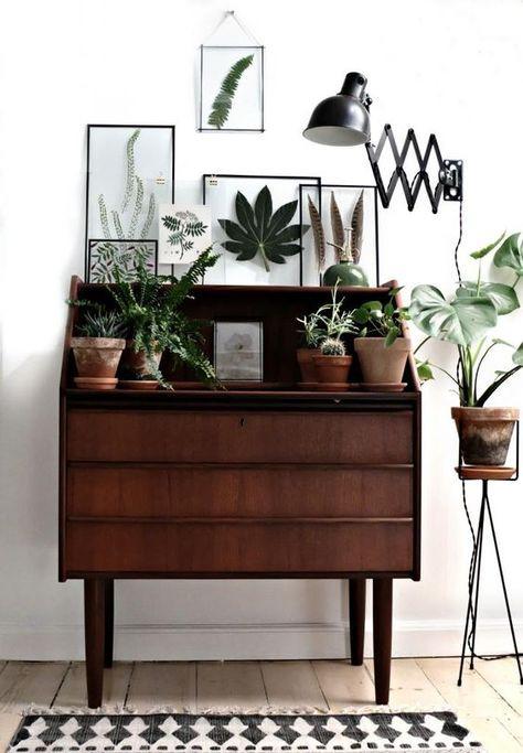 Decoração com plantas combina com móveis de madeira e branco