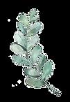 kisspng-watercolor-painting-leaf-illustr