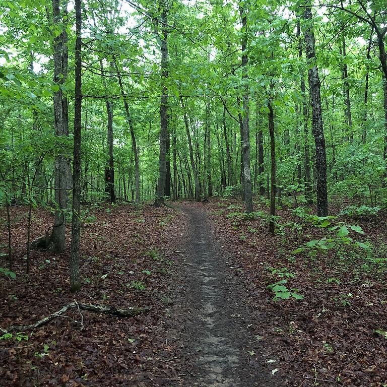 172 Loop Trail Workday