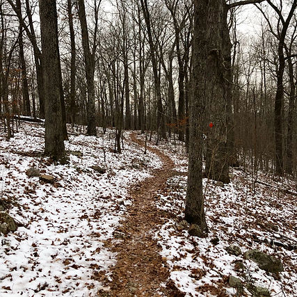 Wolf Creek Trail in February with Snow.j